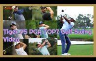 タイガーウッズ vs トップ7 PGAプロ ドライバーショット スーパースローモーション